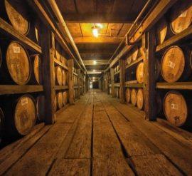 Kentucky-Bourbon-Trail-2